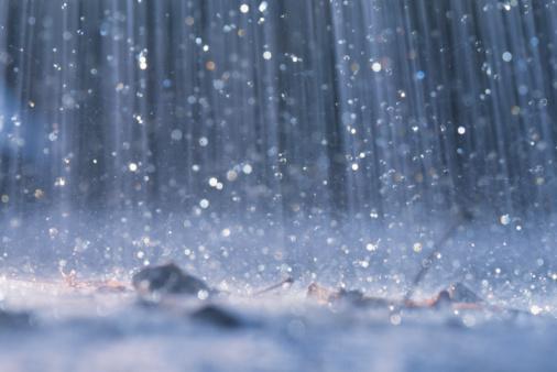 rain Avatar