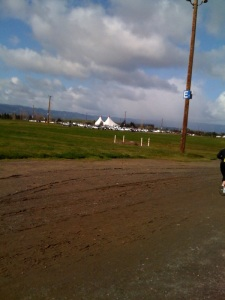 "The ""tents"" of Shoreline Amphitheatre in the background"