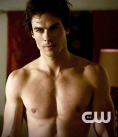 damon-the-vampire-diaries-tv-show-28059614-344-400